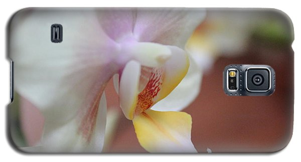 Galaxy S5 Case featuring the photograph Orchid II by Kelly Hazel