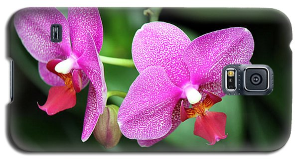 Orchid Purple Galaxy S5 Case
