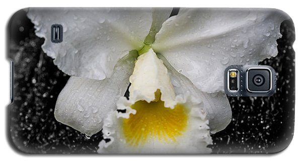Orchid Shower Galaxy S5 Case
