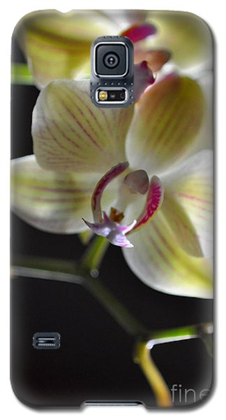 Orchidee Galaxy S5 Case