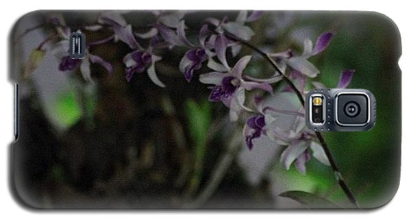 Political Galaxy S5 Case - Orchids Of Beauty And Mystery, By My by Ahmed Oujan