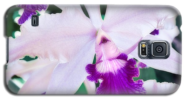 Galaxy S5 Case featuring the photograph Orchids White And Purple by Steven Sparks
