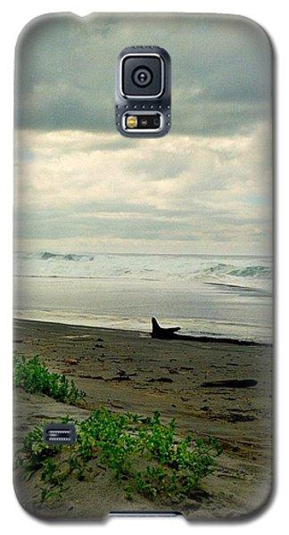 Oregon Coast 17 Galaxy S5 Case