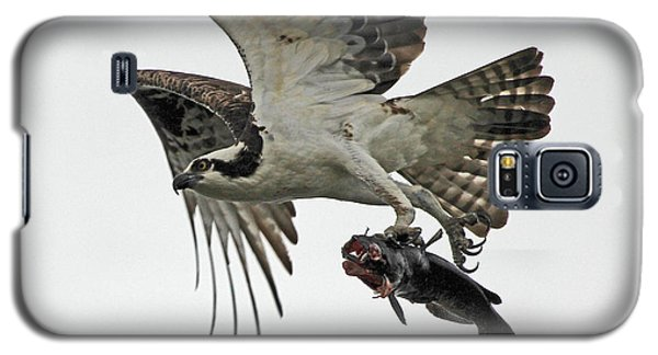 Galaxy S5 Case featuring the photograph Osprey - Catfish by Larry Nieland