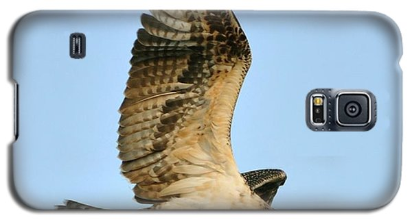 Galaxy S5 Case featuring the photograph Osprey After Flight by Rick Frost