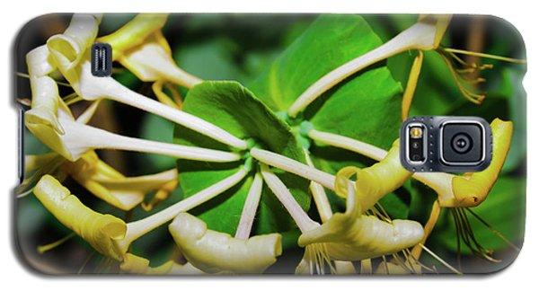 Overblown Perfoliate Galaxy S5 Case