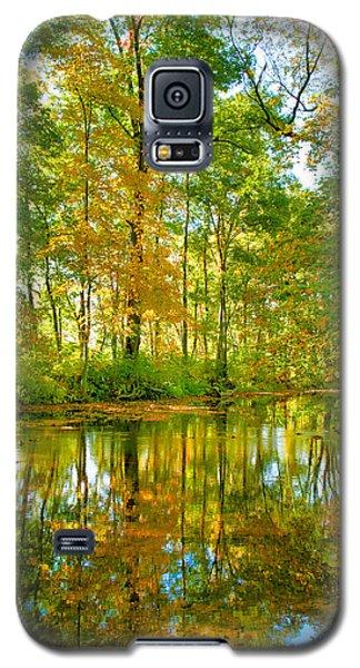 Owens Creek In Autumn I Galaxy S5 Case by Steven Ainsworth