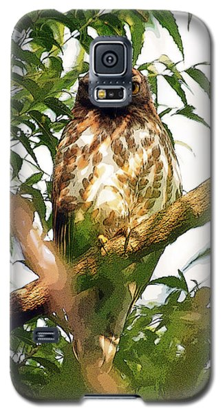 Galaxy S5 Case featuring the digital art Owl In Contemplation by Pravine Chester
