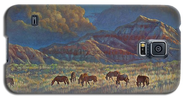 Painted Desert Painted Horses Galaxy S5 Case