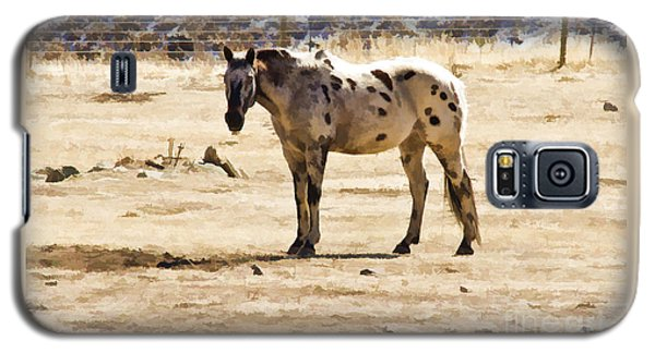 Painted Horses II Galaxy S5 Case by Angelique Olin