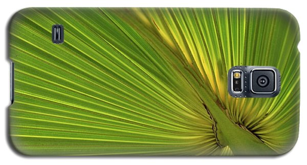 Galaxy S5 Case featuring the photograph Palm Leaf II by JD Grimes
