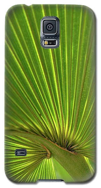 Palm Leaf Galaxy S5 Case