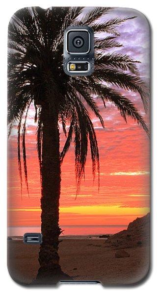 Palm Tree And Dawn Sky Galaxy S5 Case