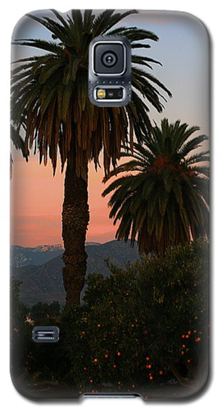 Palm Trees And Orange Trees Galaxy S5 Case