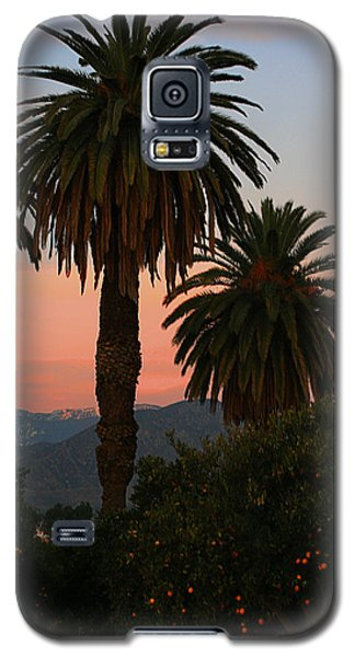 Palm Trees And Orange Trees Galaxy S5 Case by Dorothy Cunningham