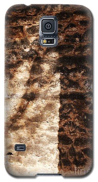 Palm Trunk Galaxy S5 Case