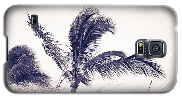 Palms 4 Galaxy S5 Case