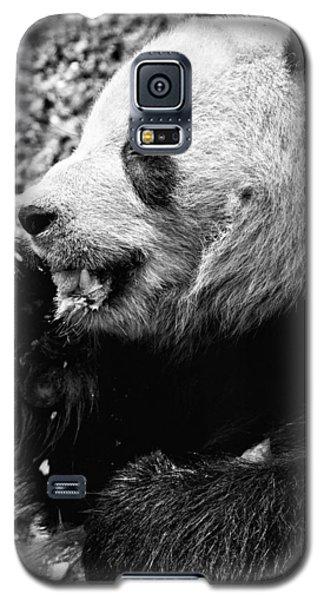 Panda Bear Eating Ice Cream Galaxy S5 Case