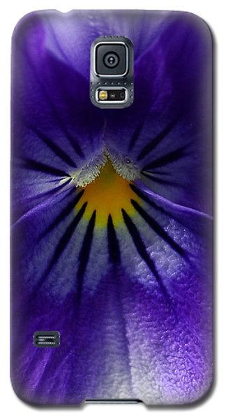 Pansy Abstract Galaxy S5 Case by Lisa Phillips