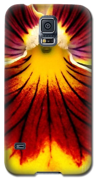 Galaxy S5 Case featuring the photograph Pansy Named Imperial Gold Princess by J McCombie