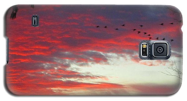 Galaxy S5 Case featuring the photograph Papaya Colored Sunset With Geese by Kym Backland