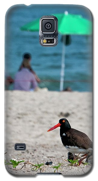 Parenting On A Beach Galaxy S5 Case