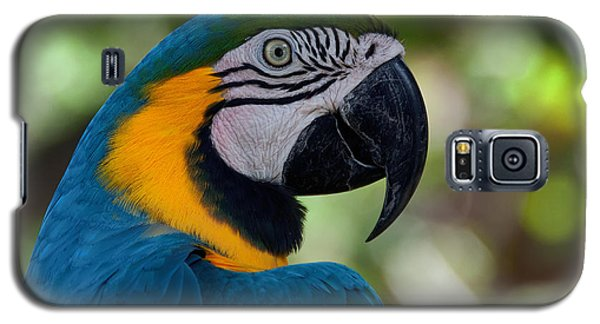 Parrot Head Galaxy S5 Case