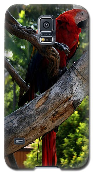 Parrot2 Galaxy S5 Case