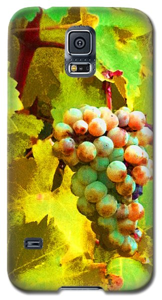 Paschke Grapes Galaxy S5 Case