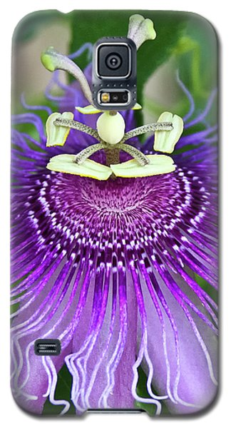 Galaxy S5 Case featuring the photograph Passion Flower by Albert Seger