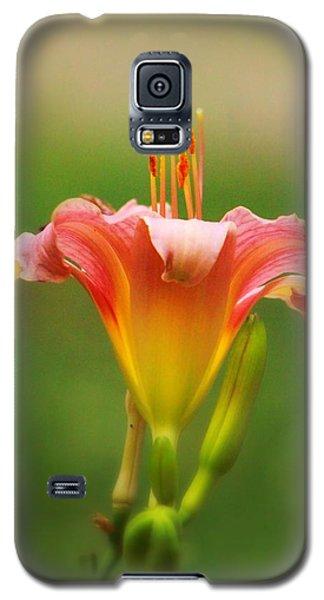 Pastel Lilyform Galaxy S5 Case