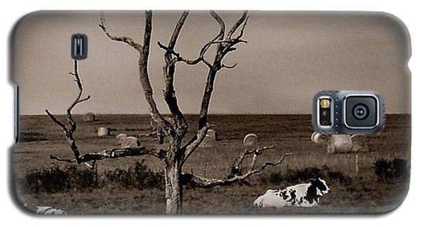 Pastorale 2 Galaxy S5 Case