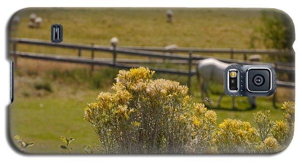 Pastures Galaxy S5 Case