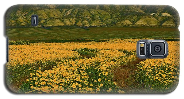 Path Through The Wildflowers Galaxy S5 Case
