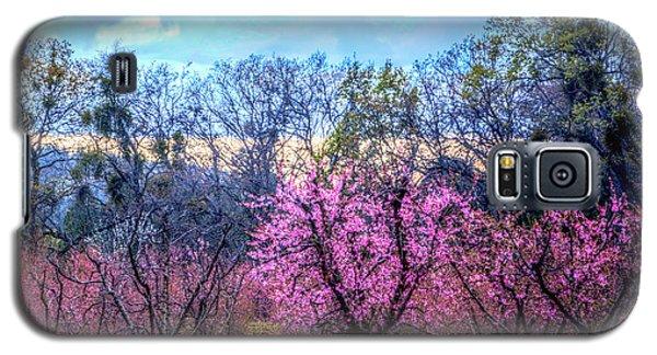 Peachy Blossum Scene2 Galaxy S5 Case