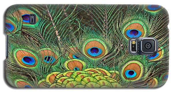 Galaxy S5 Case featuring the photograph Peacock  Detail by Larry Nieland