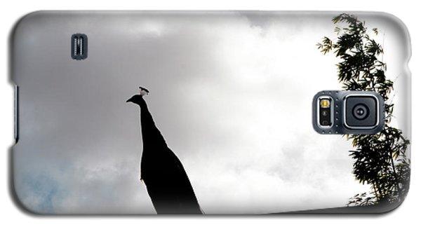 Peacock Sentry Galaxy S5 Case