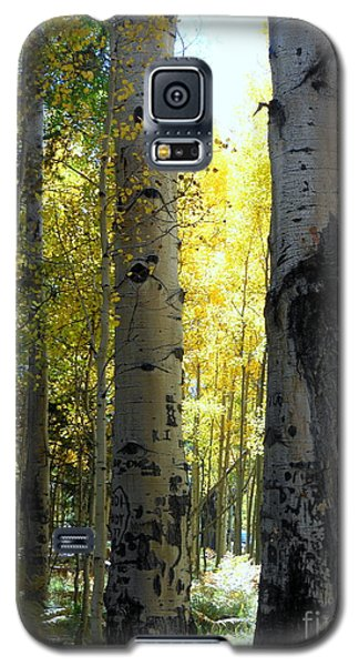 Galaxy S5 Case featuring the photograph Peek A Boo by Fred Wilson