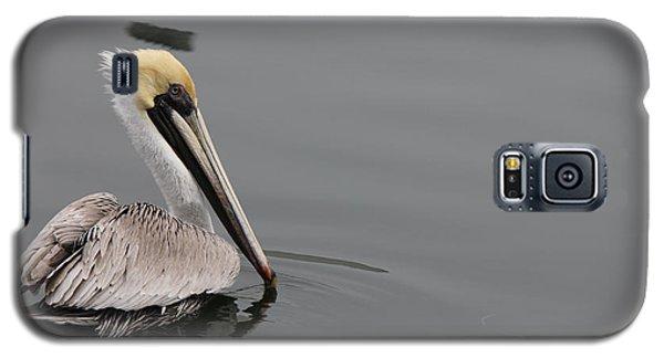 Pelican Beauty Galaxy S5 Case by Deborah Hughes