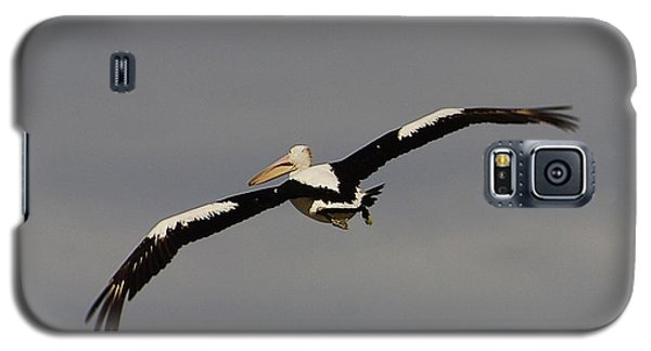 Galaxy S5 Case featuring the photograph Pelican In Flight 2 by Blair Stuart
