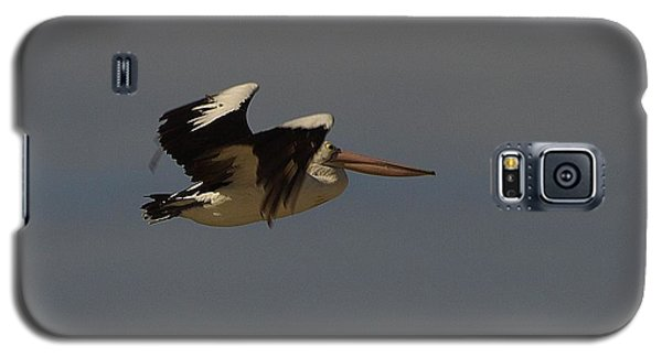 Galaxy S5 Case featuring the photograph Pelican In Flight 3 by Blair Stuart