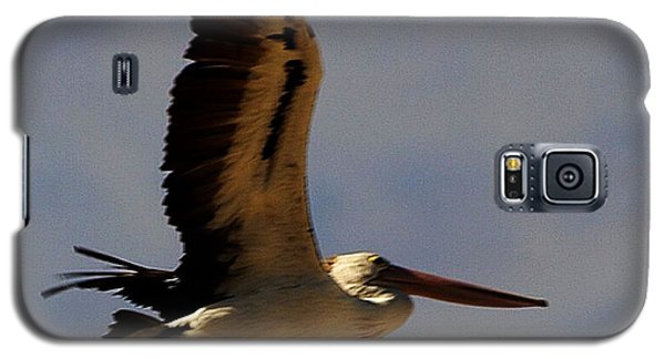Galaxy S5 Case featuring the photograph Pelican In Flight by Blair Stuart