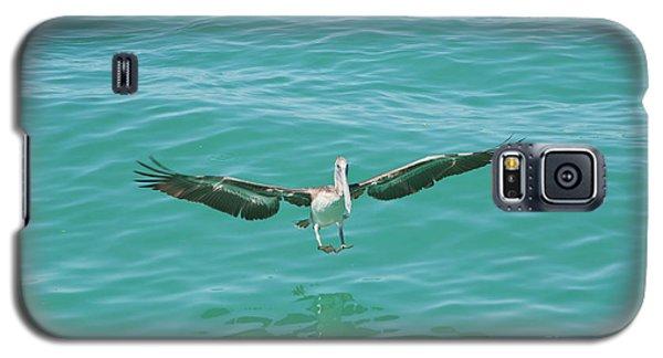 Pelican Landing Galaxy S5 Case