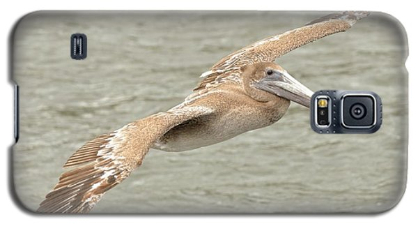 Pelican On The Water Galaxy S5 Case