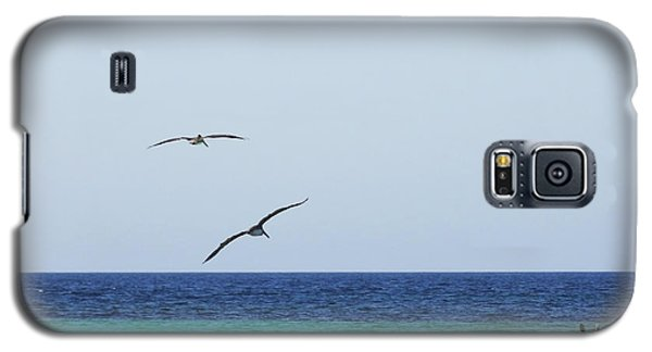 Pelicans In Flight Over Turquoise Blue Water.  Galaxy S5 Case by Anne Mott