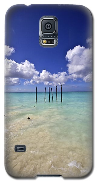 Pelicans Of Sunny Aruba Galaxy S5 Case
