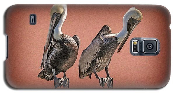Galaxy S5 Case featuring the photograph Pelicans Posing by Dan Friend