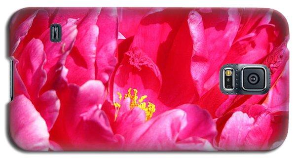 Peonie Galaxy S5 Case