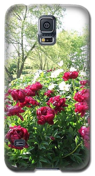Peony Garden Path Galaxy S5 Case by Rebecca Overton