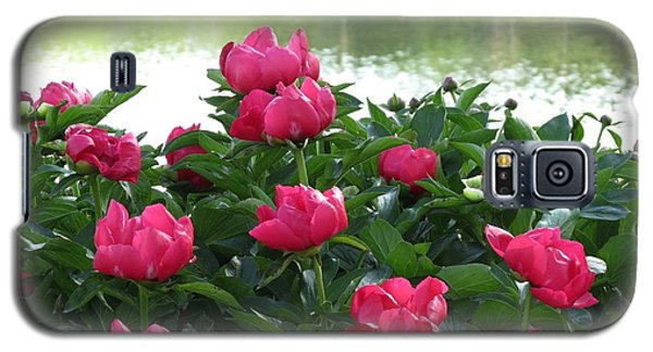 Peony Lake Reflections  Galaxy S5 Case by Rebecca Overton